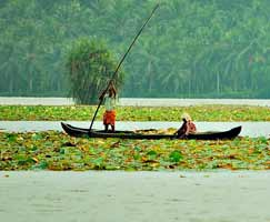 Tour Package In Kumarakom